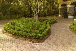 Photo #5: GreenEdge Landscaping