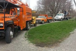 Photo #12: JASON'S TREE SERVICE LLC