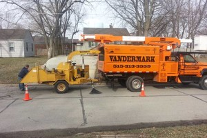 Photo #10: JASON'S TREE SERVICE LLC