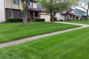 Photo #3: Excel Lawns and Landscape