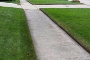 Photo #2: Excel Lawns and Landscape