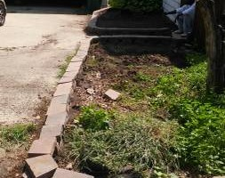 Photo #6: We do yard clean up and landscape install