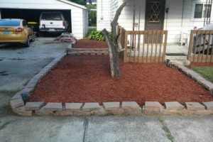 Photo #5: We do yard clean up and landscape install