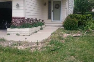 Photo #2: We do yard clean up and landscape install