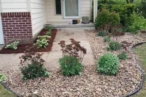 Photo #1: We do yard clean up and landscape install