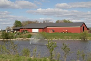 Photo #6: Horse Boarding Available at Still Water Arena