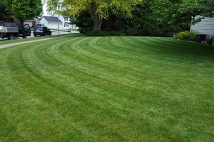 Photo #20: Jerry's Lawn Care