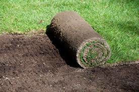 Photo #4: Landscaping and Lawn care.