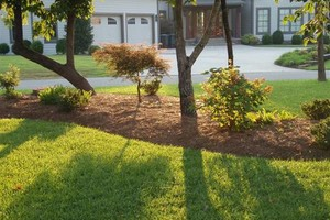 Photo #1: Landscaping and Lawn care.