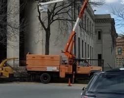 Photo #1: RON'S TREE SERVICE