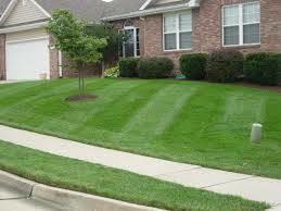 Photo #1: JP's Lawn Mowing Service