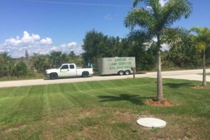 Photo #2: CANCUN LAWN AND TREE SERVICE