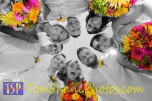 Photo #2: Tom Shane Photos