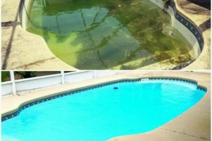 Photo #2: Messina Pools. POOL CLEANING SERVICE