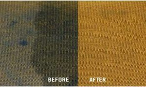 Photo #18: America Carpet Cleaning