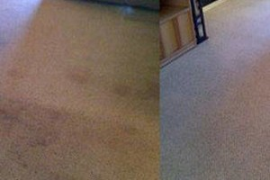 Photo #14: America Carpet Cleaning