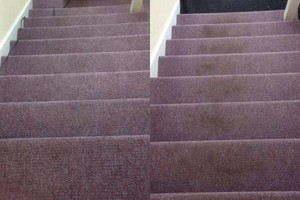 Photo #10: America Carpet Cleaning