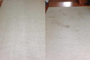 Photo #7: America Carpet Cleaning