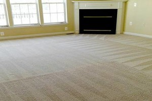 Photo #4: America Carpet Cleaning
