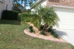 Photo #21: MARTINEZ LANDSCAPING