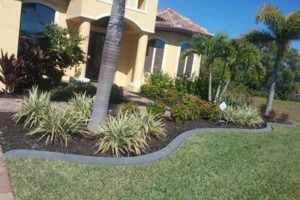Photo #18: MARTINEZ LANDSCAPING