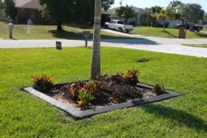 Photo #9: MARTINEZ LANDSCAPING
