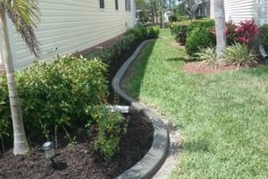 Photo #6: MARTINEZ LANDSCAPING