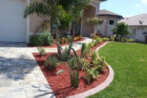 Photo #3: MARTINEZ LANDSCAPING