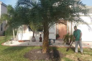Photo #1: MARTINEZ LANDSCAPING