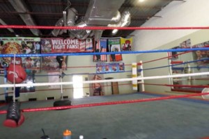 Photo #4: Pound 4 Pound Boxing( Pro & Am)