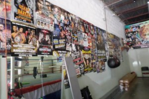 Photo #2: Pound 4 Pound Boxing( Pro & Am)