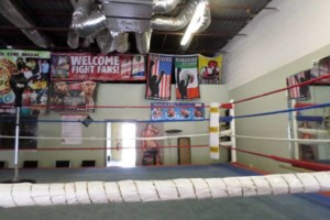 Photo #1: Pound 4 Pound Boxing( Pro & Am)