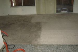 Photo #1: Carpet and Upholstery Cleaning. Special $99.95!