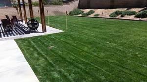 Photo #1: Gardening services...