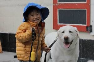 Photo #1: Dog walker and pet sitter in SF!!