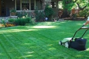 Photo #1: Quick Lawn Services - Clean Ups, Haul offs, Mowing