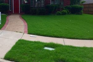 Photo #1: Mow. Starting lawns are $25.00