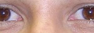 Photo #1: Permanent Makeup Services / Eyelash Extensions