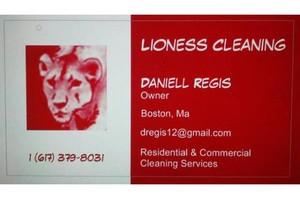Photo #1: Lioness Cleaning Service