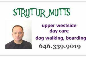 Photo #1: STRUT UR MUTTS Dog Services