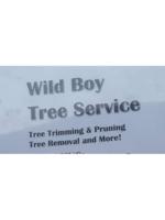 Logo Wild boy tree service
