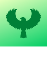 Logo Green Falcon Cleaning Services