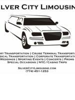 Logo Silver City Limousine