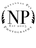 Logo Netanya's Pux
