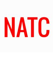 Logo Nathaniel American Tires