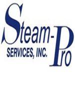 Logo Steam Pro
