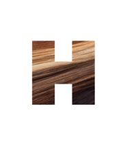 Logo Hotheads Hair Extensions