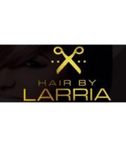 Logo Hair by Larria