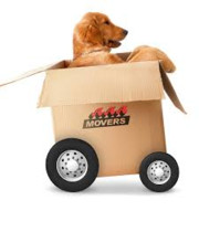 Logo Orlando and Sons Movers