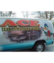 Logo Ace Leak Detection and Video